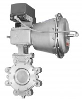 High Performance Butterfly Valves (BHP)
